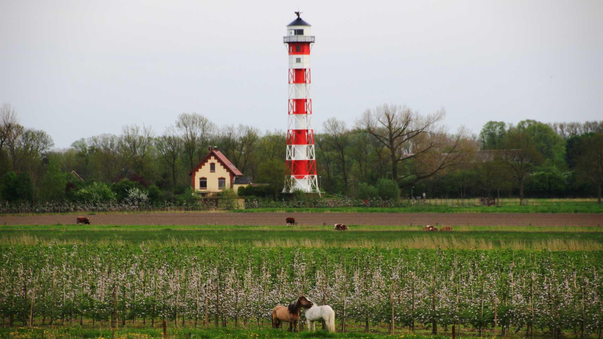 Startseite-Leuchtturm